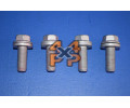 BOULONS/RONDELLES FIXATION CHARNIERE HAYON (4)